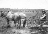 Harris, Battle